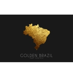 Brazil map Golden Brazil logo Creative Brazil vector image