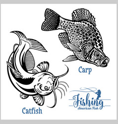 Catfish and carp fishing on usa isolated on white vector