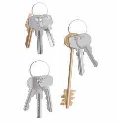 Keys bunches vector