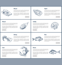 Mussel and oyster posters set vector