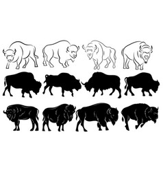 Set bison collection stylized bison vector