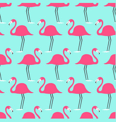 tropical birds flamingo on a turquoise background vector image