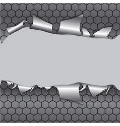 hexagon metallic background vector image vector image
