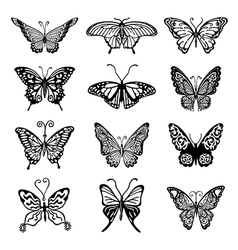 Black-white butterfly logo set vector image