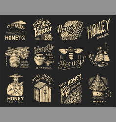 honey and bees set beekeeper man and honeycombs vector image