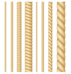 realistic 3d detailed thickness rope line set vector image