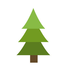 tree pine natural environment ecological symbol vector image
