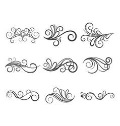 variety floral elements set vector image