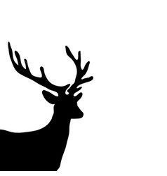 black silhouette head deer white background vector image