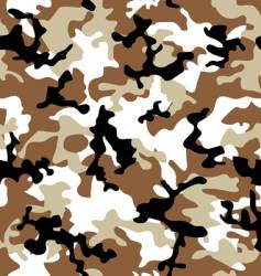 camouflage desert vector image vector image