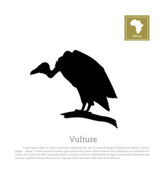 Black silhouette of a vulture on white background vector