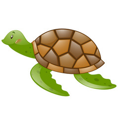 Cute turtle with brown shell vector