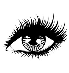 Eye with black long eyelashes vector