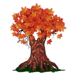 Fantasy deciduous tree with face in the fall vector