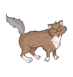 Norwegian forest cat icon in cartoon style vector