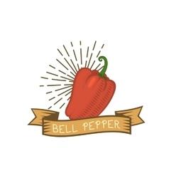 Red pepper badge vegetable food flat vector