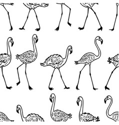 seamless pattern outlines walking flamingos vector image