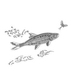 Fish and ephemera as engraved vector