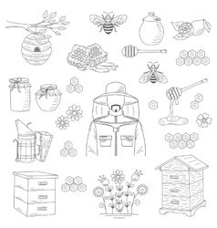 honey collection with beekeeping elements vector image vector image