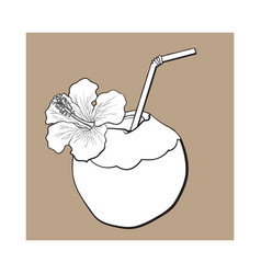 Coconut cocktail drink decorated with hibiscus vector