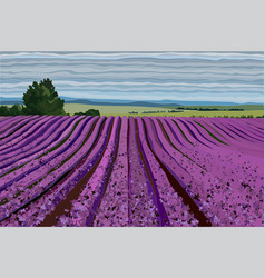 bright lavender field with bushes trees and blue vector image
