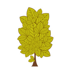 Colorful leafy tree plant with several leaves vector