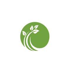 logos green tree leaf ecology nature vector image