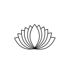 plant petals icon vector image