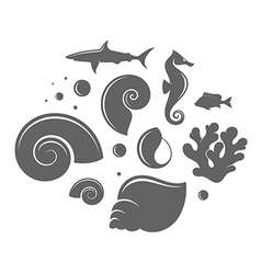 Shell and fish vector