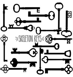 skeleton keys silhouette vector image