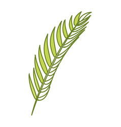 tropical branch leaves plant vector image