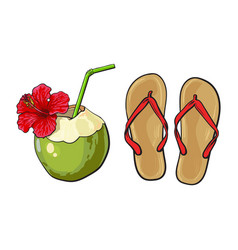 pair of flip flops and coconut drink summer vector image