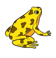 Cartoon poison-dart frog vector