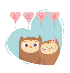 happy valentines day cute couple owls balloons vector image