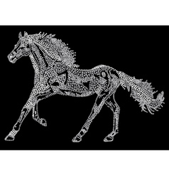 Horse of the stars vector image