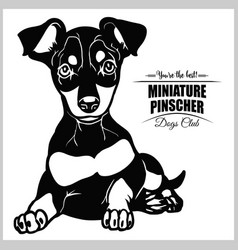 Miniature pinscher - for t vector