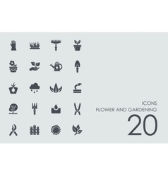 Set of flower and gardening icons vector image