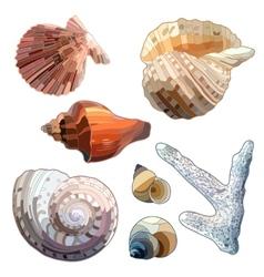 Set of Sea Shells And Coral vector image