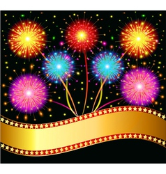 bright salute firework vector image