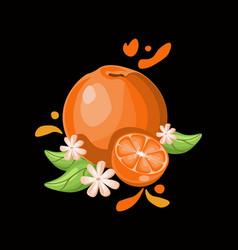 orange delicious fruit on black background vector image vector image