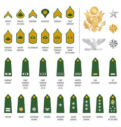 Military ranks shoulder badge army soldier straps vector