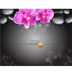 Romantic background with two orchids vector
