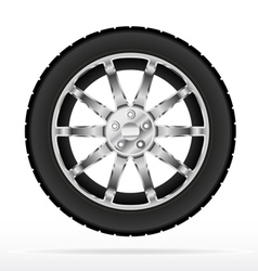 car wheel and tyre vector image vector image