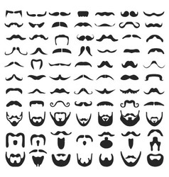 Beard with moustache vector image vector image