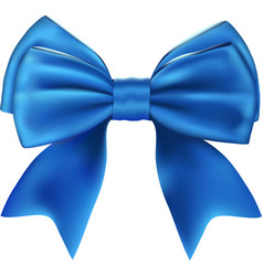 Beautiful Isolated Blue Bow vector image vector image