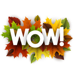 autumn wow background with leaves vector image