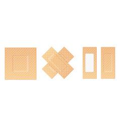 creative of adhesive bandage vector image
