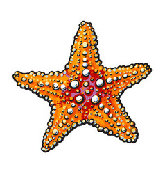 Hand drawn starfish underwater living organism vector