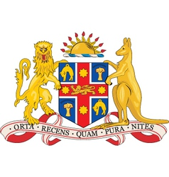 New South Wales vector