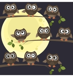 Night owls on branches vector image